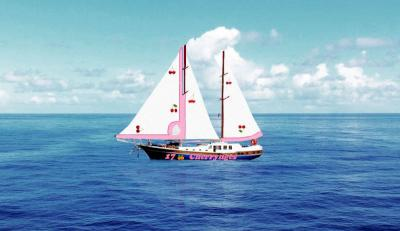 Take Me to the Pink Yacht- Once Upon an Ethereal Diamond - book author Vanessa
